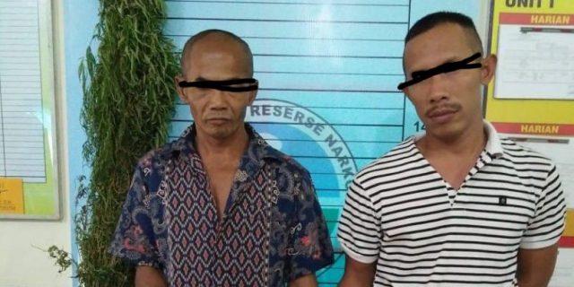 Hasil Pengembangan, Dua Pria ini Ditangkap Polres Aceh Utara