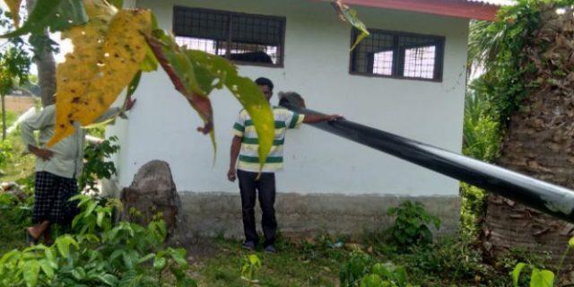 Pompanisasi Tak Berfungsi, Belasan Hektar Sawah di Geulanggang Baro Terlantar