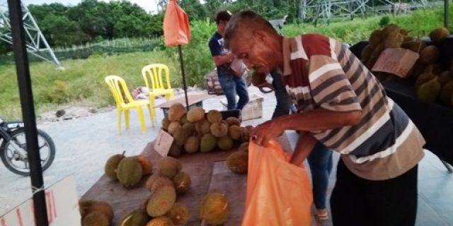Durian Musang King Digemari Pelancong Asal Indonesia